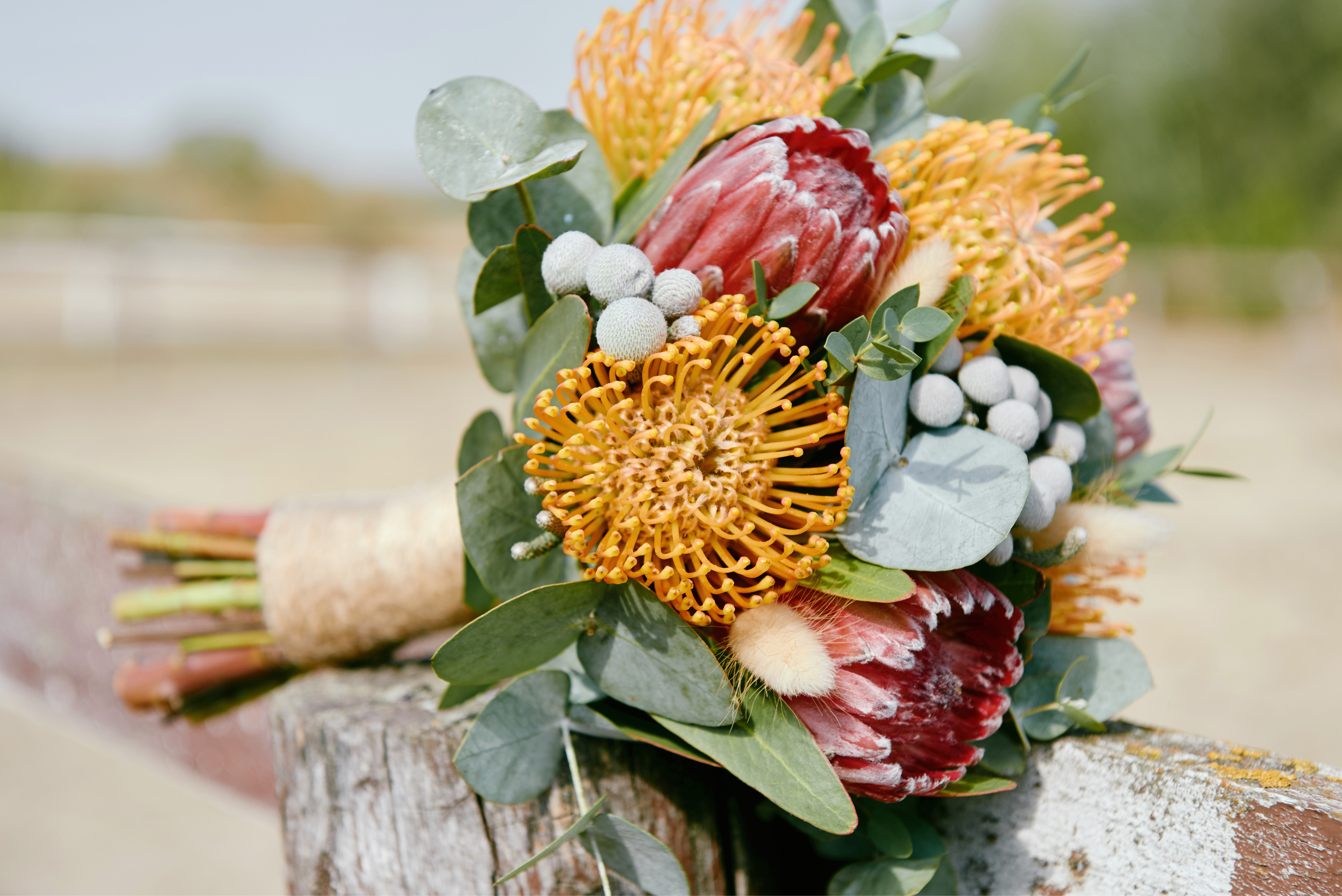 bouquet with protea and nutans