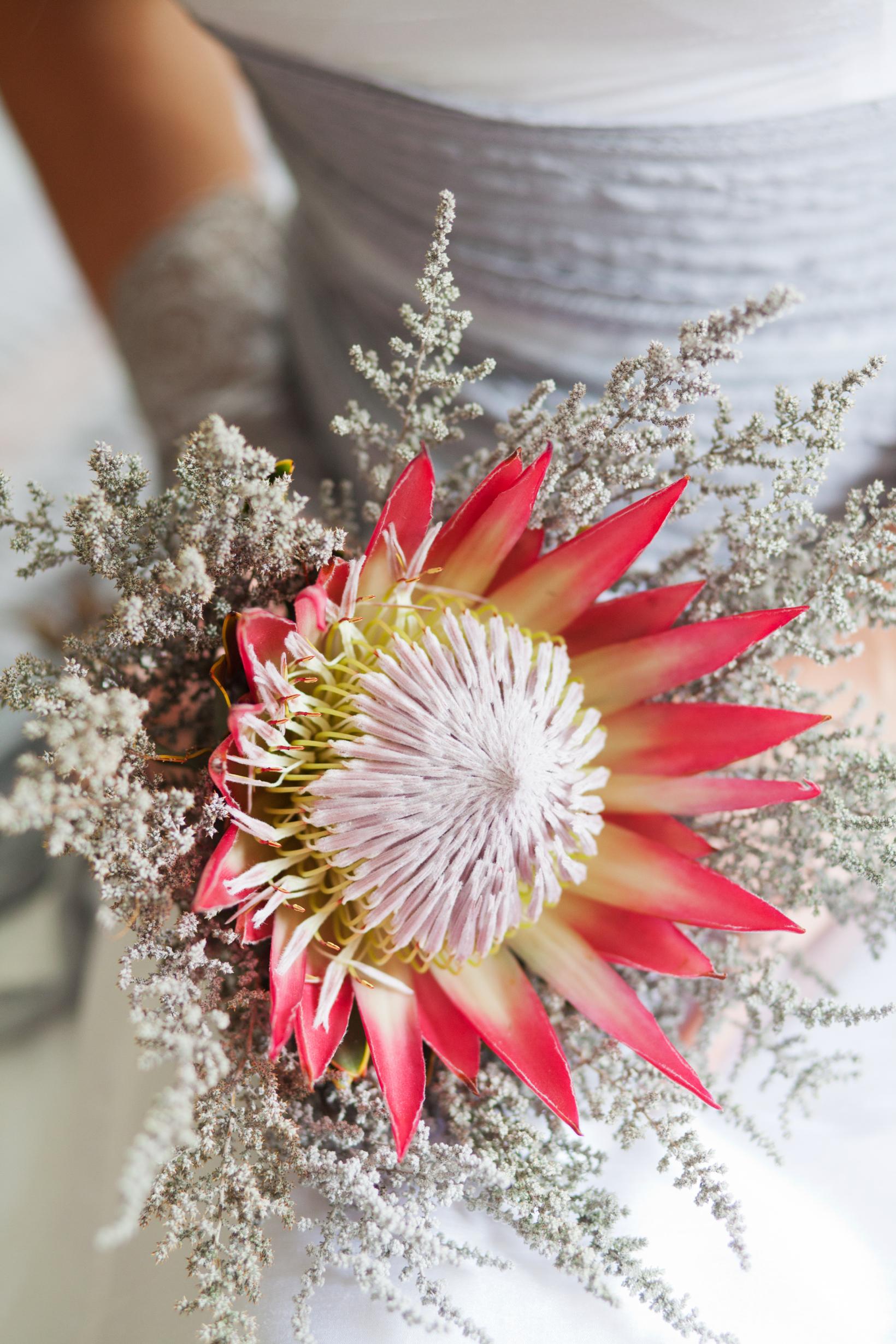 bridal bouquet protea
